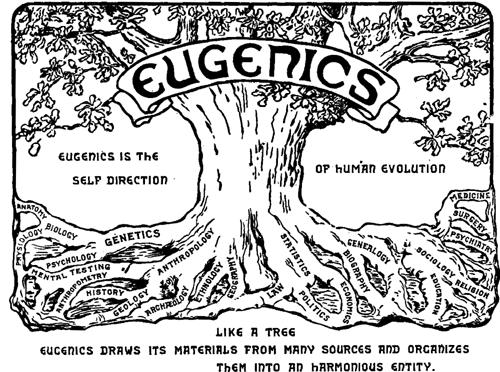 Der kybernetisierte Eugenismus der Reproduktionsmedizin